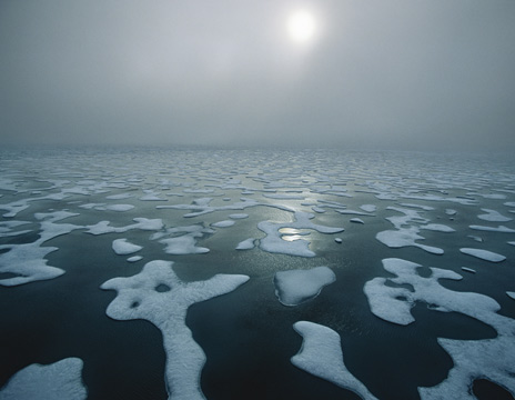 Bestand:Melting ice sea.jpg