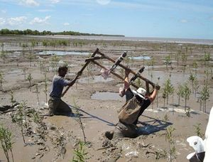 Fluid mud at the Suriname Coast..jpg
