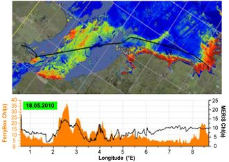 Remote sensing picture of the southern North Sea for the parameter chlorophyll-a.jpg