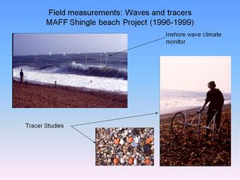 Field measurements waves and tracers.jpg