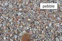 Pebble sediment.jpg