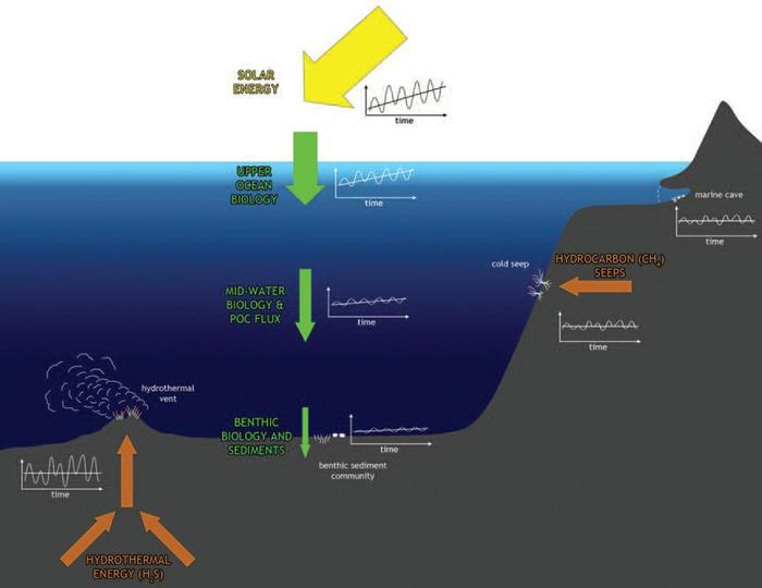 Effects Of Climate Change On The North Atlantic Benthos Coastal Wiki