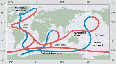 Thermohaline circulation of the oceans coastal wiki functioning of the thermohaline circulation thc gumiabroncs Images